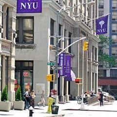 New York University User Photo