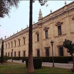 University of Seville User Photo