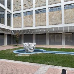 Museo Nacional de Bellas Artes de La Habana User Photo