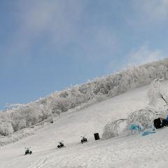 雲上草原星空滑雪場用戶圖片