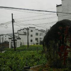 延村用戶圖片