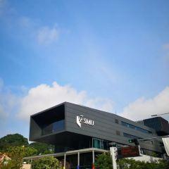 싱가포르 매니지먼트 대학 여행 사진