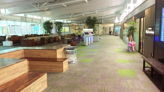 Incheon International Airport (ICN) (인천국제공항)