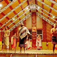塔瑪基毛利村寨用戶圖片