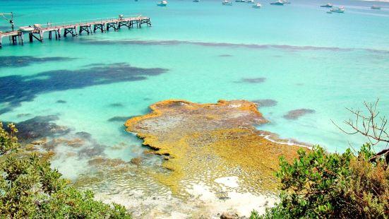 Vivonne Bay