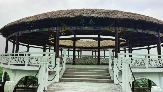 Hong Lake Marsh