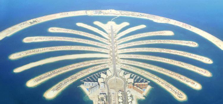 The Palm Jumeirah Cruise