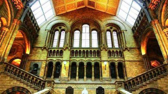 恩裡科•卡菲自然科學博物館