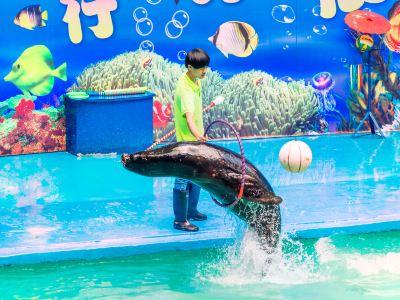 항저우 동물원(항주 동물원)