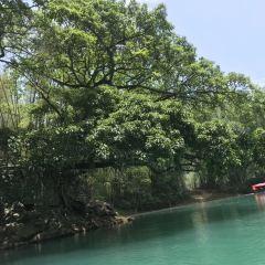 平塘風景區用戶圖片