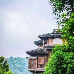 滿隴桂雨用戶圖片