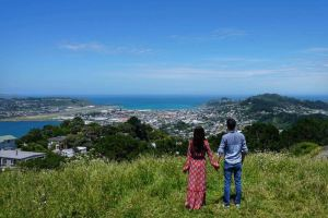 Wellington,Recommendations