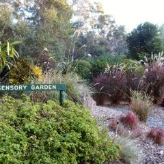 North Coast Regional Botanic Garden User Photo
