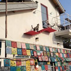 Ihwa Mural Village User Photo