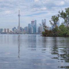CN Tower User Photo