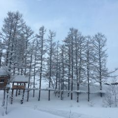 Niseko Village Pure用戶圖片