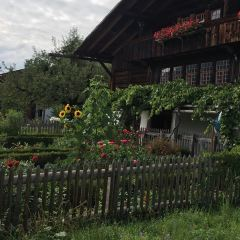 Heimat- und Rebbaumuseum Spiez User Photo