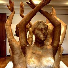 本鄉新紀念雕刻美術館用戶圖片