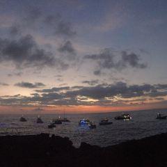 Ali'I Kai晚宴遊船用戶圖片