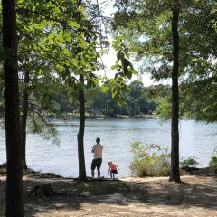Jordan Lake State Recreation Area User Photo