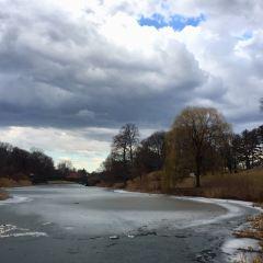 華盛頓公園用戶圖片