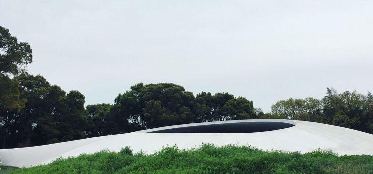 테시마 미술관3
