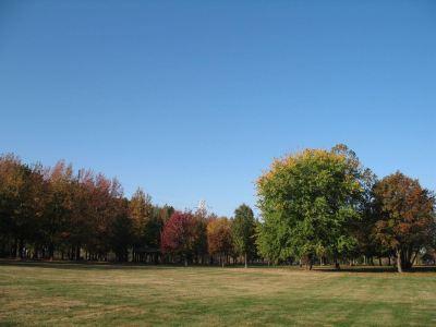 Lincoln Memorial Garden