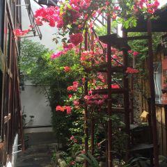 Zui Liu Li Private Kitchen · Shen Xiang Yunnan Cai User Photo