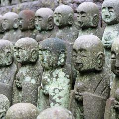 Hasedera Temple User Photo