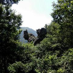 綠林古兵寨用戶圖片