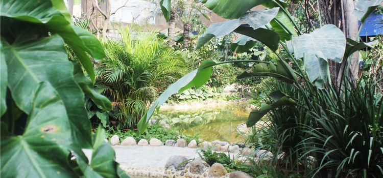 阿爾卡迪亞溫泉