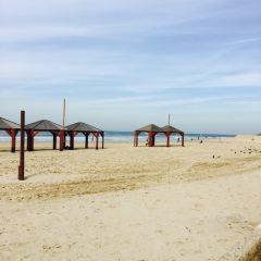 Frishman Beach User Photo