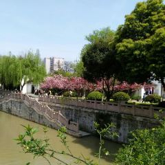 Gaojing Park User Photo
