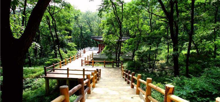 Mt Yimeng Tourist Area2