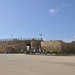 十字軍城堡用戶圖片