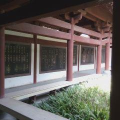 Yanbotai User Photo