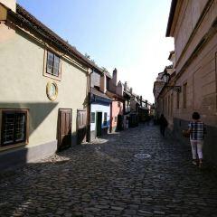 Golden Lane User Photo