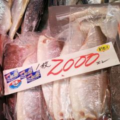Sapporo Central Wholesale Market Jogai Market User Photo