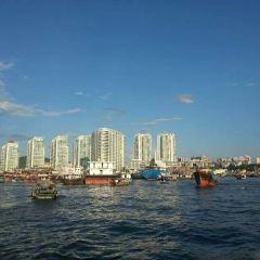旭陽遊艇俱樂部用戶圖片
