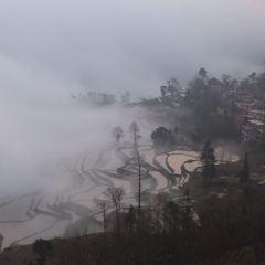 Duoyishu Terraced Field User Photo