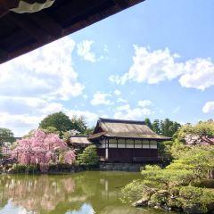 Heian Shrine User Photo