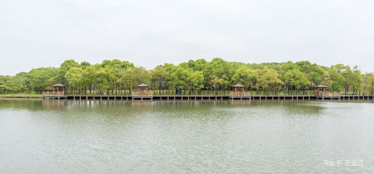 The Shanghai Xuelang Lake Ecological Park1