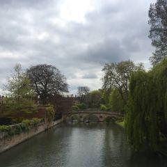 劍橋大學用戶圖片