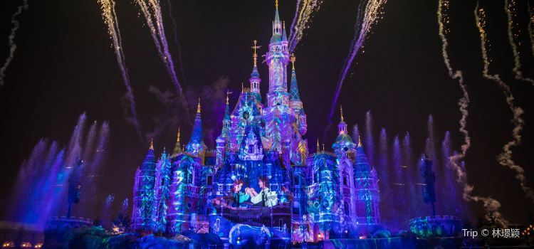 Ignite the Dream - A Nighttime Spectacular of Magic and Light3