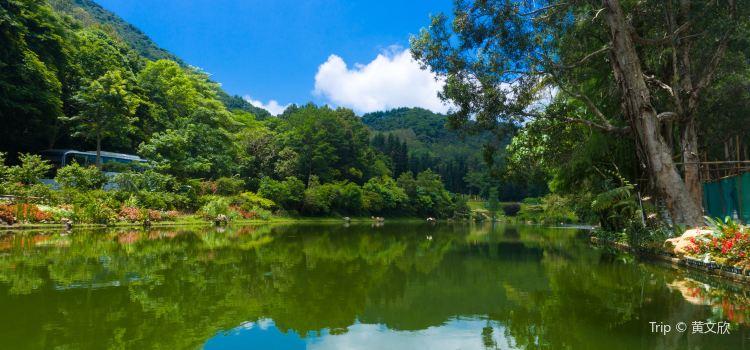 Fairylake Botanical Garden1