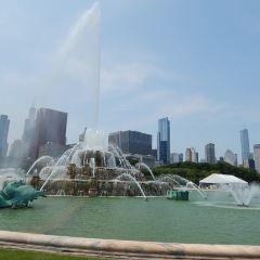 Clarence Buckingham Fountain User Photo