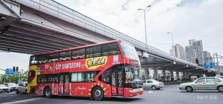 City Sightseeing Tour Bus3