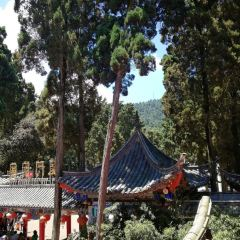 Huating Temple User Photo