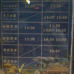 진이청해양관 여행 사진