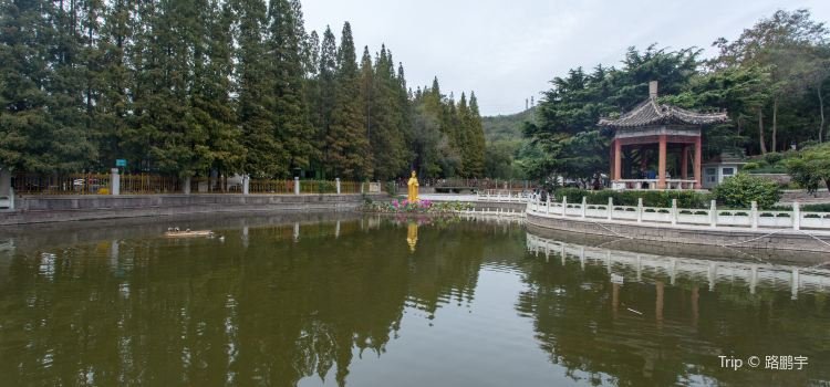 칭다오 식물원1